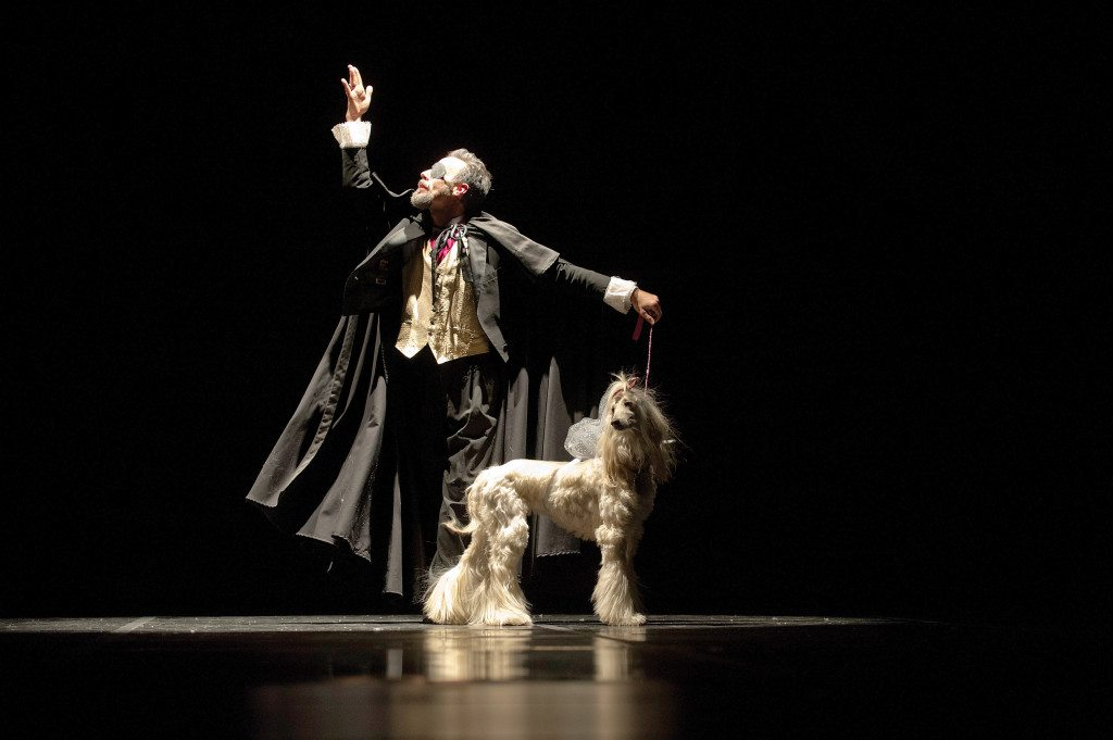 Carl Dean as Drosselmeyer with Sleet the Afghan Angel in a recent production of Muttcracker. The fourth annual Mutt-cracker is a one-night-only performance, Dec. 11, featuring dogs in appropriate roles.